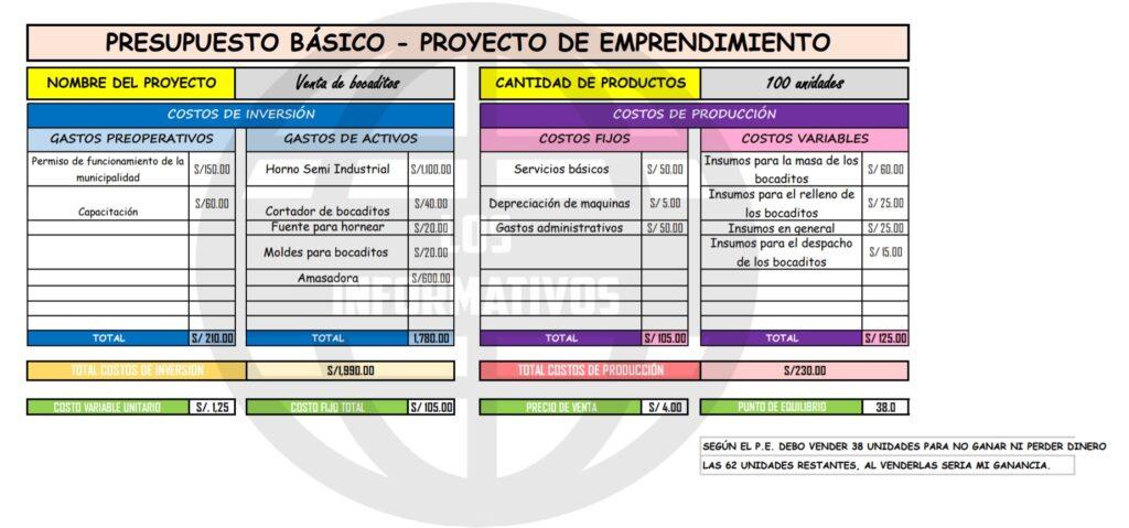 Elabora el presupuesto básico de inversión de tu proyecto de emprendimiento.