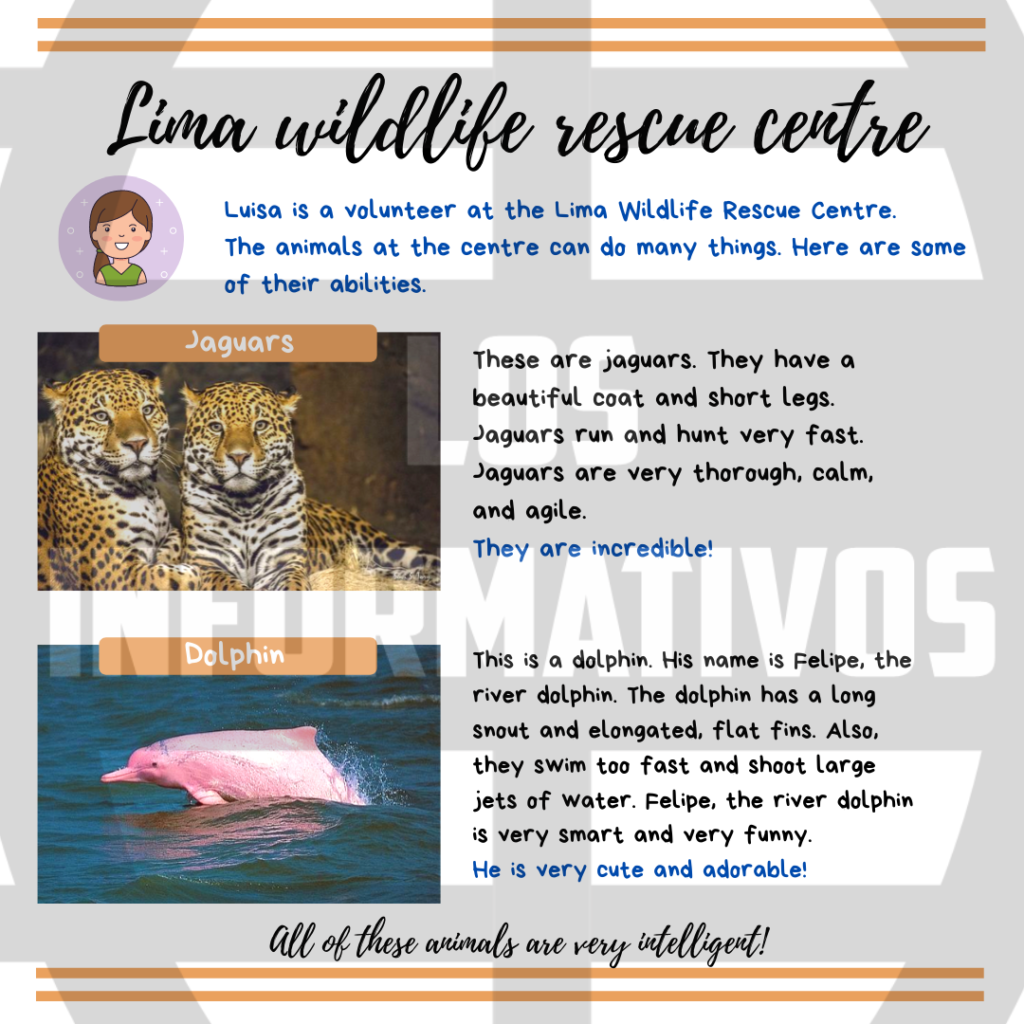 Option A: Create a brochure about jaguars and Felipe, the dolphin. Step 1: Remember the information about animals you learned about last week. You can check your portfolio. Step 2: Complete the chart with the animals' body parts, abilities and other characteristics. Follow the examples: Step 3: Write sentences about the animals' body parts, abilities and other characteristics. Follow the examples: Step 4: Create your brochure and add pictures and a name for the rescue centre. Be creative! Option B: Create a brochure about two endangered animals from your region. You decide! Step 1: Choose two of the animals you learned about last week. Step 2: Complete the chart with the animals' body parts, abilities and other characteristics. Step 3: Write sentences about the animals' body parts, abilities and other characteristics. Step 4: Create your brochure and add pictures and a name for the rescue centre. Be creative!
