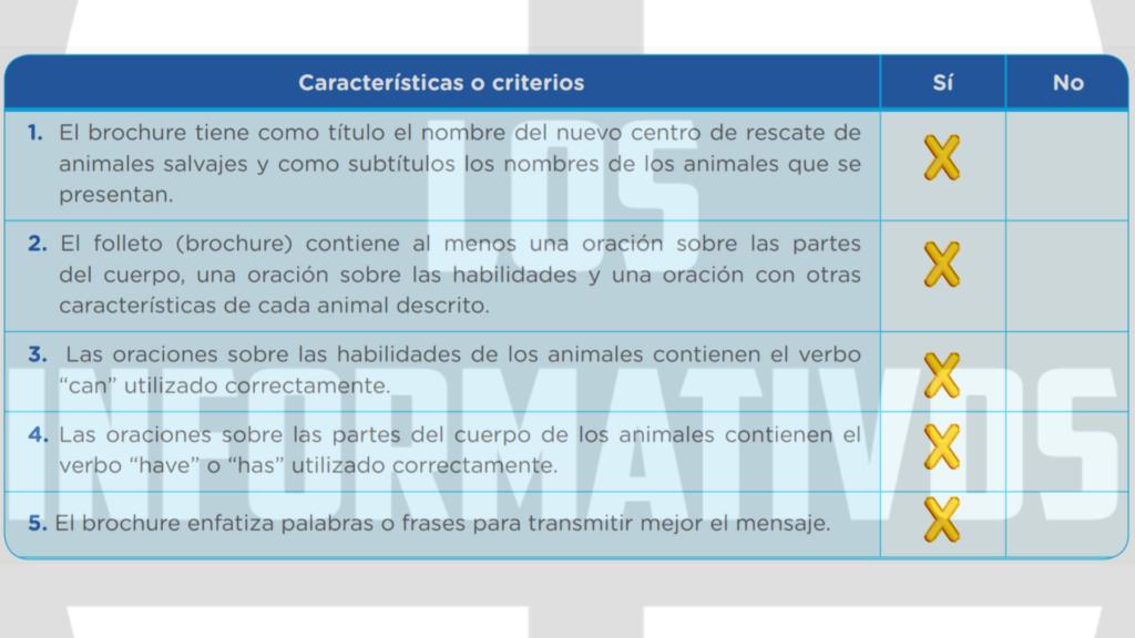Mientras elaboras tu folleto (brochure) es importante que tomes en cuenta estas características: