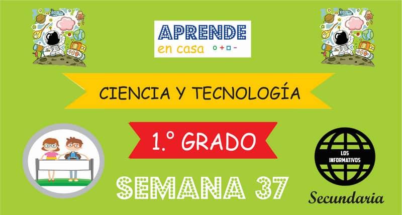 SEMANA 37 – Ciencia y Tecnología (1º SECUNDARIA)