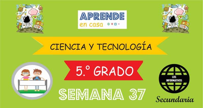 SEMANA 37 – Ciencia y Tecnología (5º SECUNDARIA)