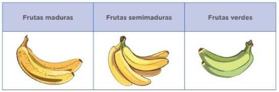 Imagina que estás en una chacra con una gran variedad de frutas, como manzanas, naranjas, plátanos, mandarinas, peras, etc., y tú debes recogerlas y ordenarlas. ¿Cómo lo harías? Quizás, una alternativa, sería organizarlas según su estado, como en el siguiente cuadro: