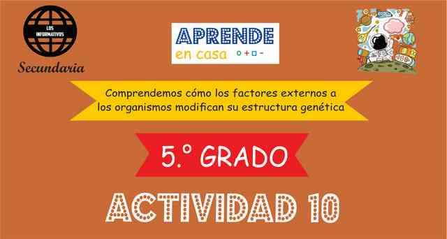 ACTIVIDAD 10 - Comprendemos cómo los factores externos a los organismos modifican su estructura genética – 5° de SECUNDARIA
