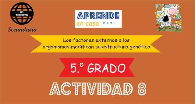 ACTIVIDAD 8- Los factores externos a los organismos modifican su estructura genética – 5° de SECUNDARIA