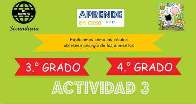 ACTIVIDAD 3 – Explicamos como las células obtienen energía de los alimentos – 3° de SECUNDARIA